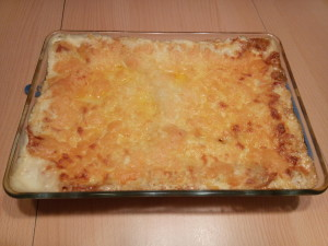 vegetarische Lasagne TM5